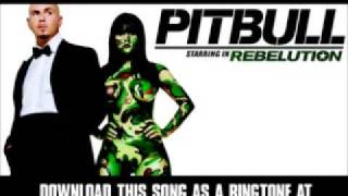 Give Them What They Ask For – Pitbull Starring In: Rebelution (2009) | Pitbull