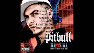 Culo (Remix) – Money Is Still A Major Issue (2005) | Pitbull ft. Ivy Queen, Lil Jon