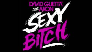 Sexy Bitch – One Love (2010) | David Guetta ft. Akon
