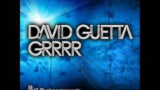 GRRRR – One Love (2010) | David Guetta
